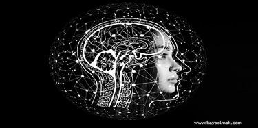 max weber bilim ve sosyoloji
